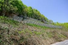 主要地方道大江西川線雪崩予防柵設置工事